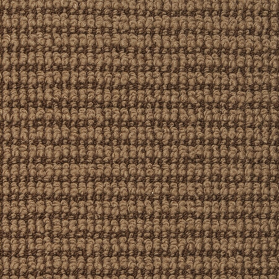 STAINMASTER Morning Glory Active Family Mocha Bean Berber Carpet Sample