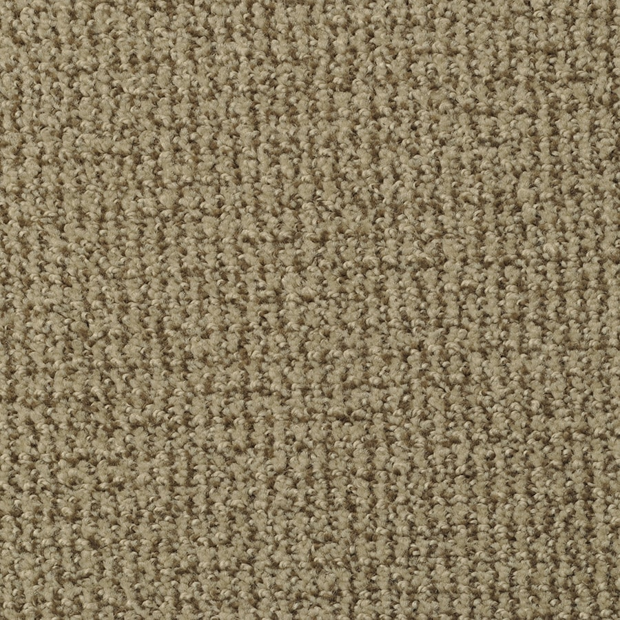 STAINMASTER Active Family Morning Jewel Coco Berber/Loop Carpet Sample