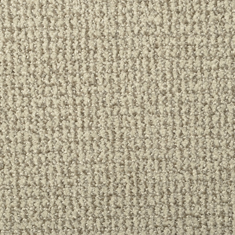 STAINMASTER Morning Jewel Active Family Portabello Cut and Loop Carpet Sample