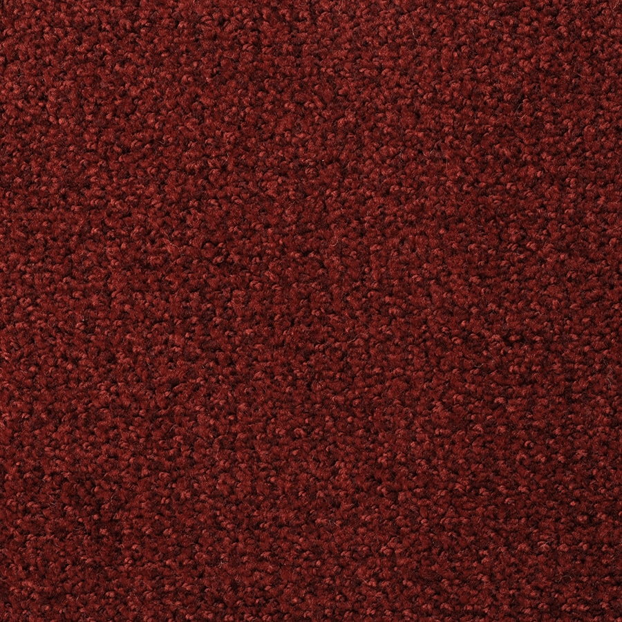 STAINMASTER Morning Jewel Active Family Berry Frappe Cut and Loop Carpet Sample