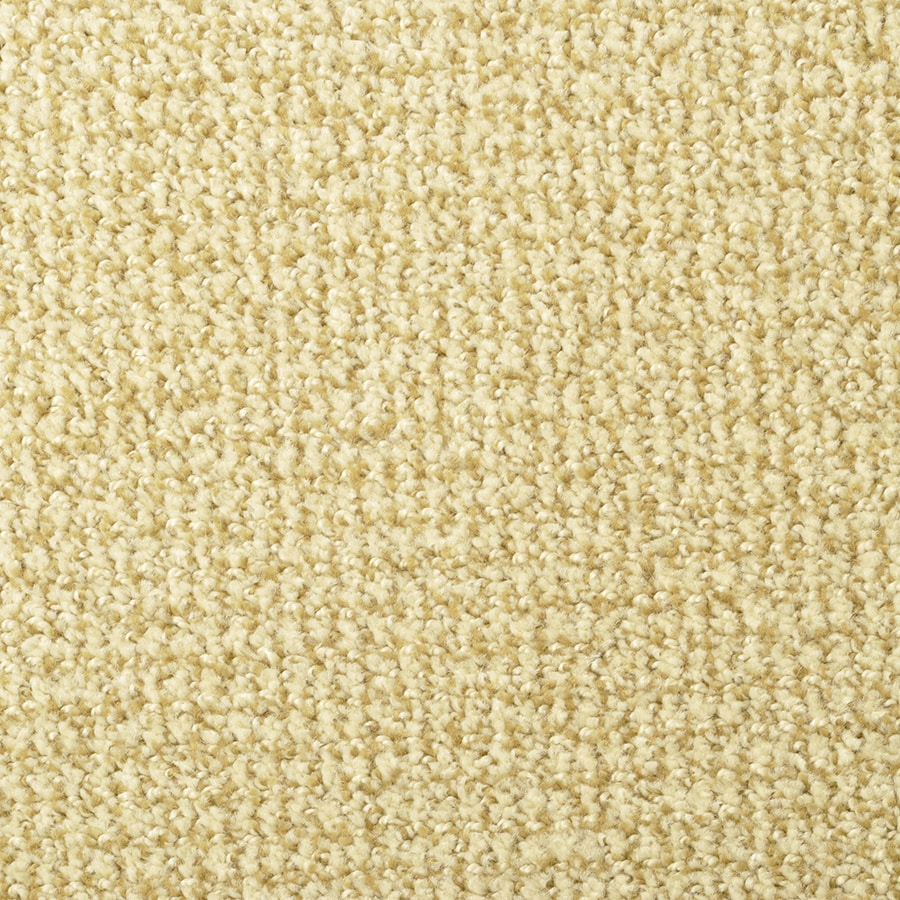 STAINMASTER Morning Jewel Active Family Butterscotch Cut and Loop Carpet Sample