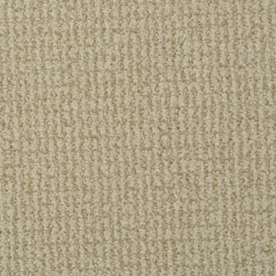 STAINMASTER Morning Jewel Active Family Web Cut and Loop Carpet Sample