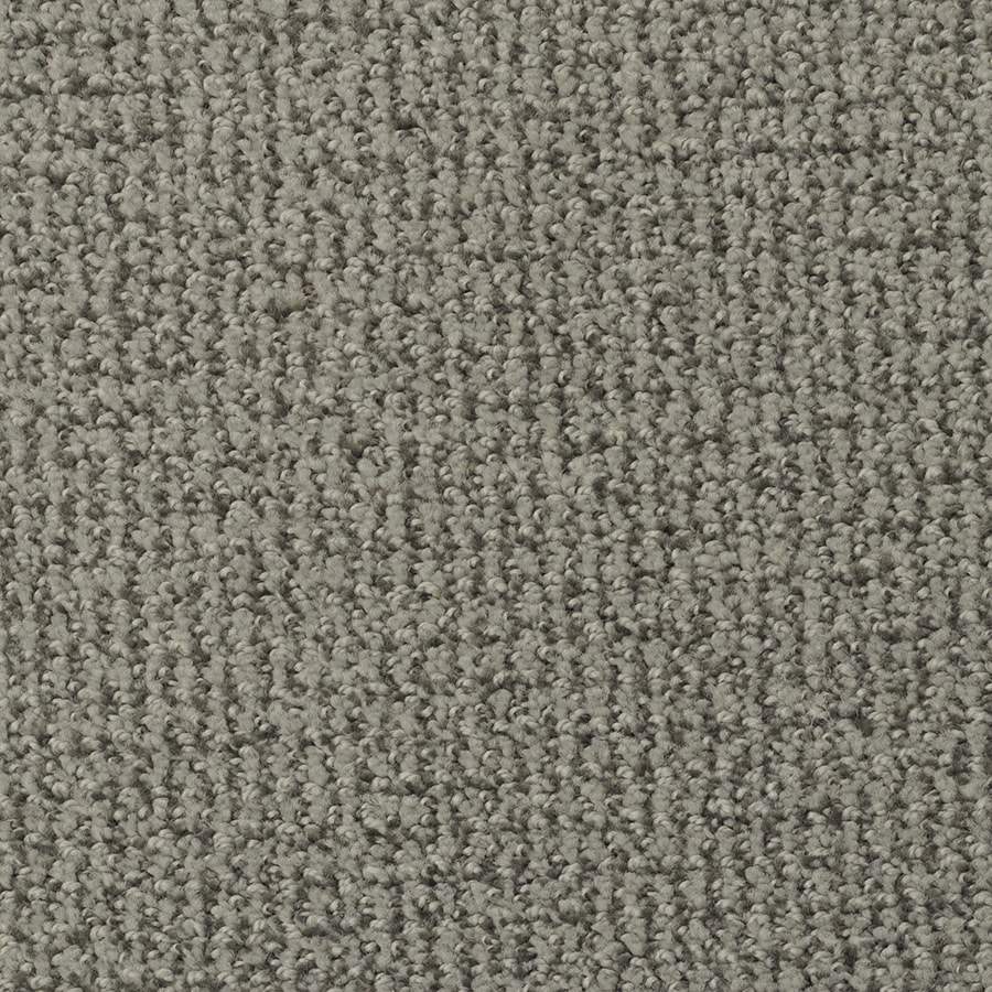 STAINMASTER Morning Jewel Active Family Eton Cut and Loop Carpet Sample