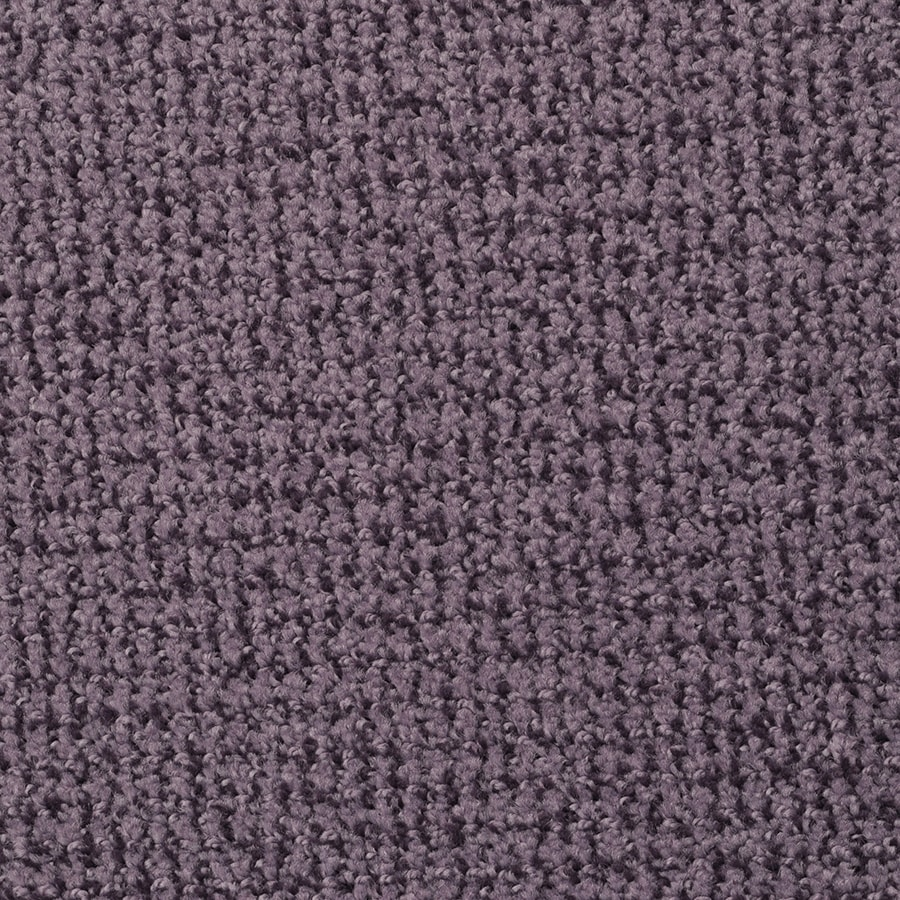 STAINMASTER Morning Jewel Active Family Deep Purple Cut and Loop Carpet Sample