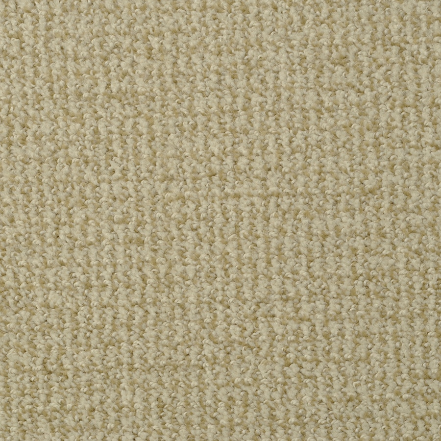STAINMASTER Morning Jewel Active Family Austin Bluff Cut and Loop Carpet Sample