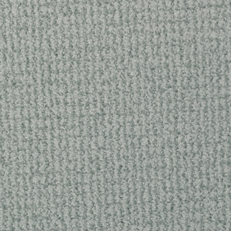 STAINMASTER Active Family Morning Jewel Amazon Berber/Loop Carpet Sample