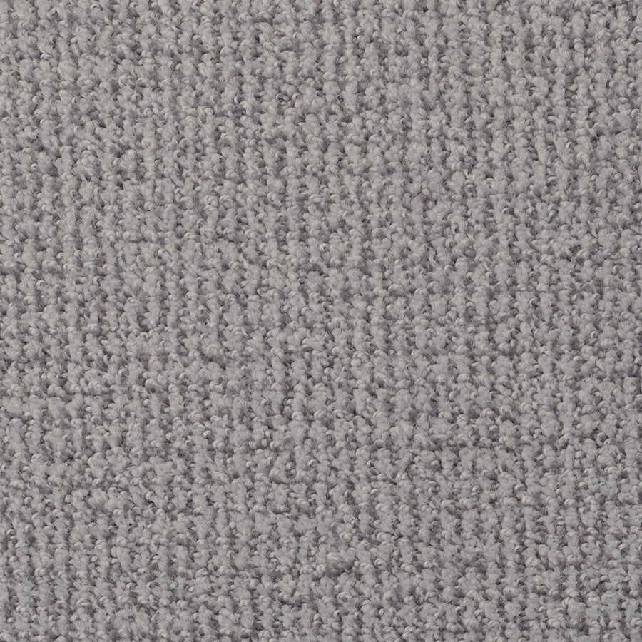 STAINMASTER Morning Jewel Active Family Canyon Cut and Loop Carpet Sample
