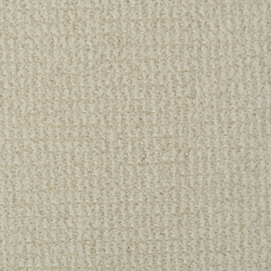 STAINMASTER Morning Jewel Active Family Butter Cookie Cut and Loop Carpet Sample