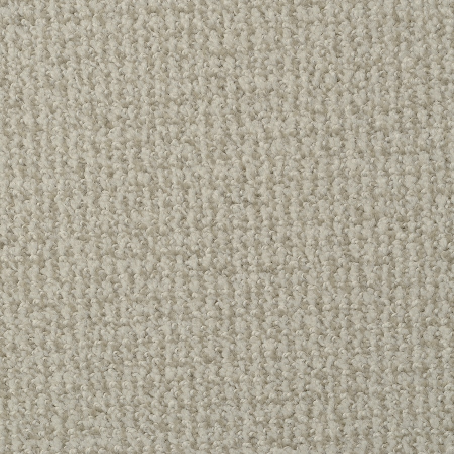 STAINMASTER Morning Jewel Active Family True Grit Cut and Loop Carpet Sample