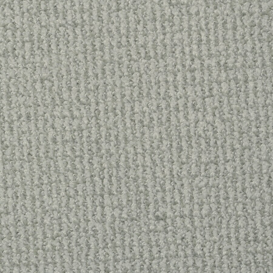 STAINMASTER Active Family Morning Jewel Android Carpet Sample