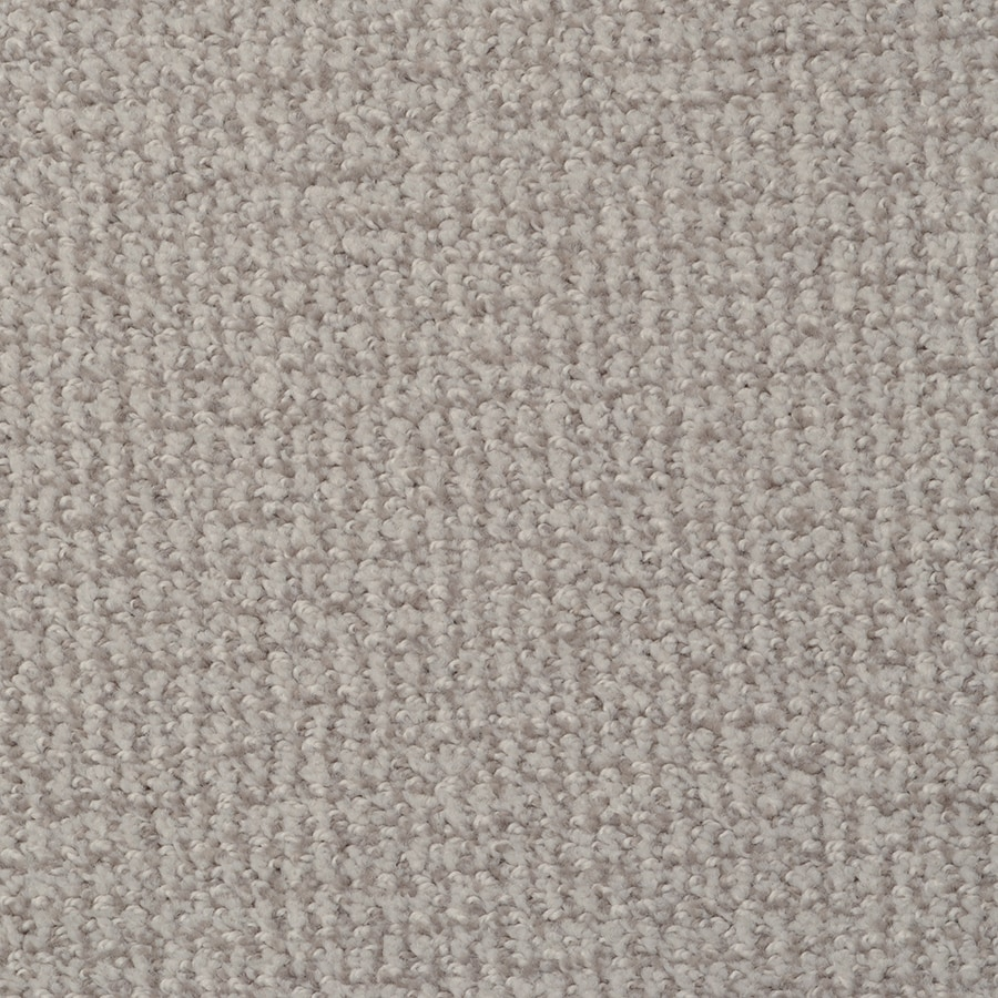 STAINMASTER Morning Jewel Active Family Windjammer Cut and Loop Carpet Sample