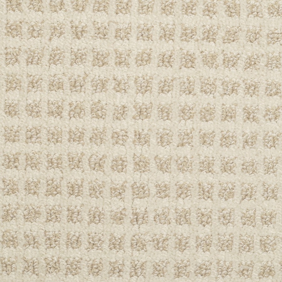 STAINMASTER Active Family Medford Notable Neutral Carpet Sample
