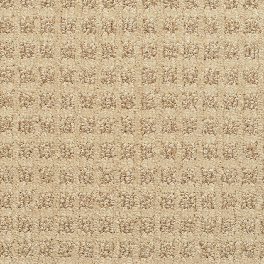 STAINMASTER Active Family Medford Thornbush Carpet Sample