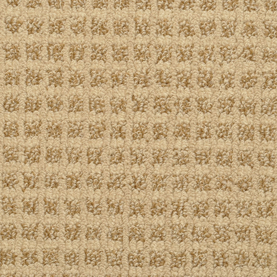 STAINMASTER Active Family Medford Basket Berber/Loop Carpet Sample