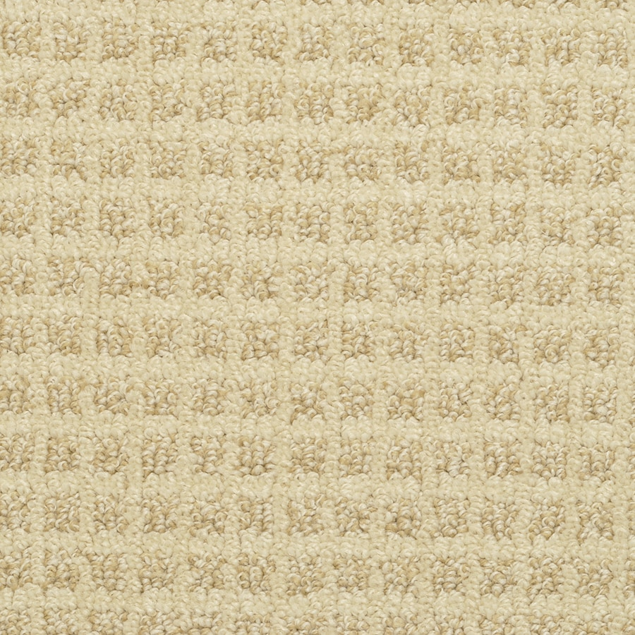 STAINMASTER Active Family Medford Sunkissed Berber/Loop Carpet Sample