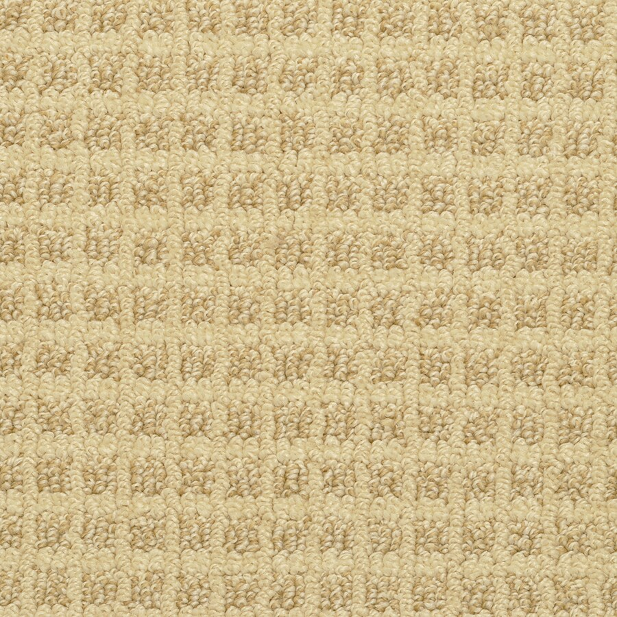 STAINMASTER Medford Active Family Corn Flower Cut and Loop Carpet Sample