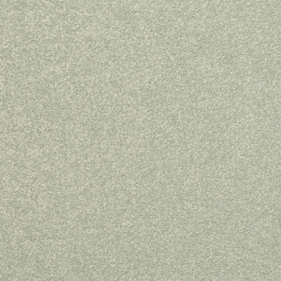 STAINMASTER Active Family Influential Juniper Plush Carpet Sample