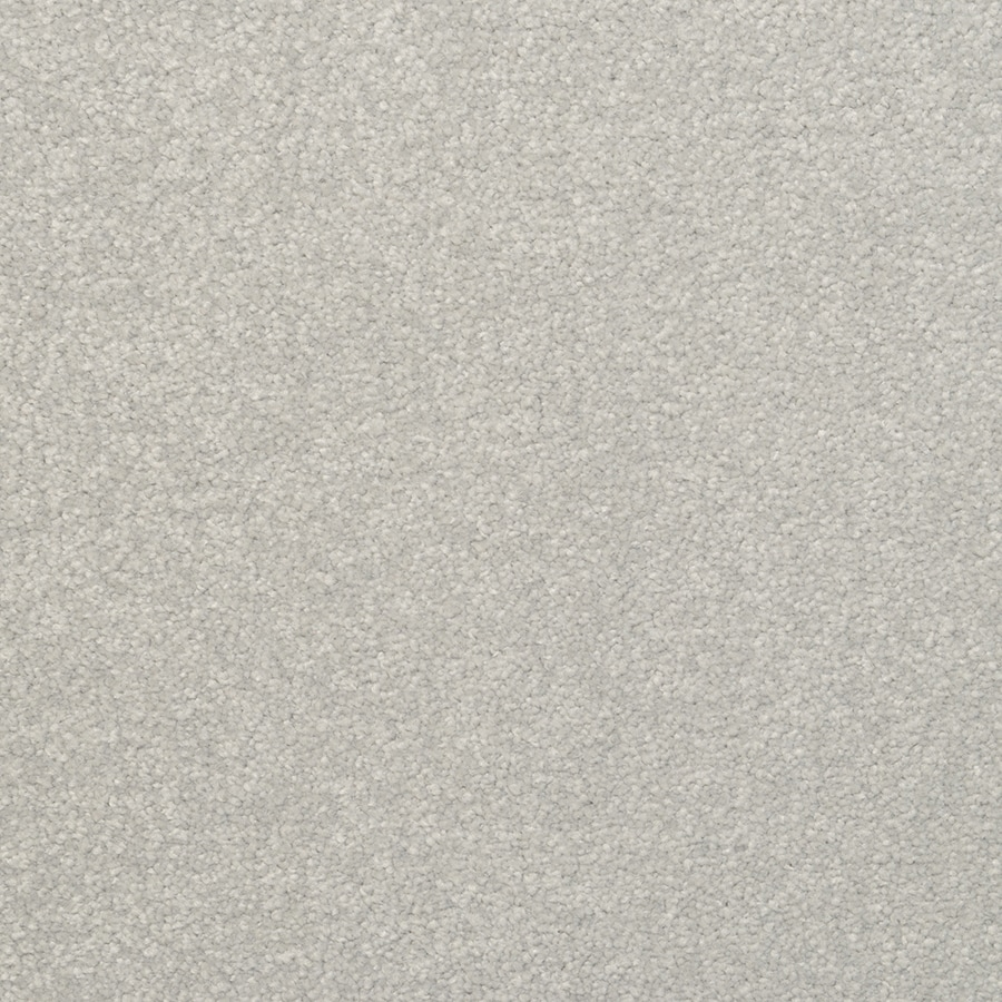 STAINMASTER Active Family Influential Silver Birch Carpet Sample