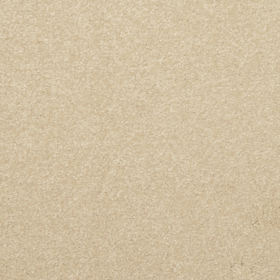 STAINMASTER Active Family Influential Seashell Carpet Sample