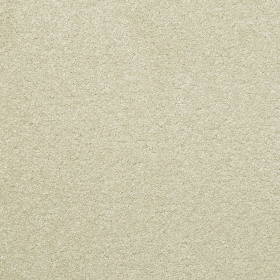 STAINMASTER Active Family Influential Cool Mint Carpet Sample