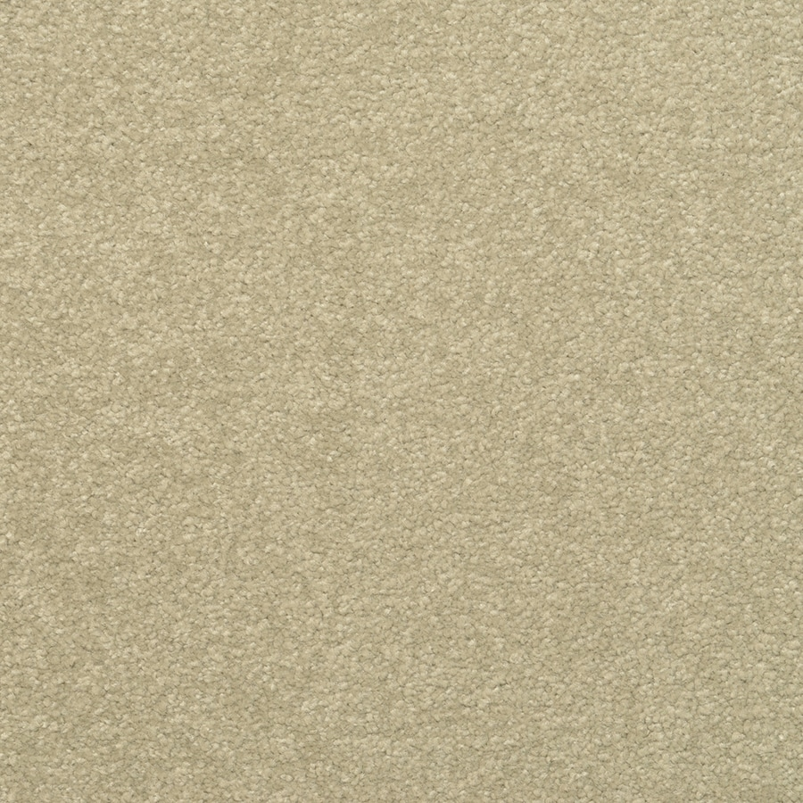 STAINMASTER Influential Active Family Spanish Olive Plus Carpet Sample