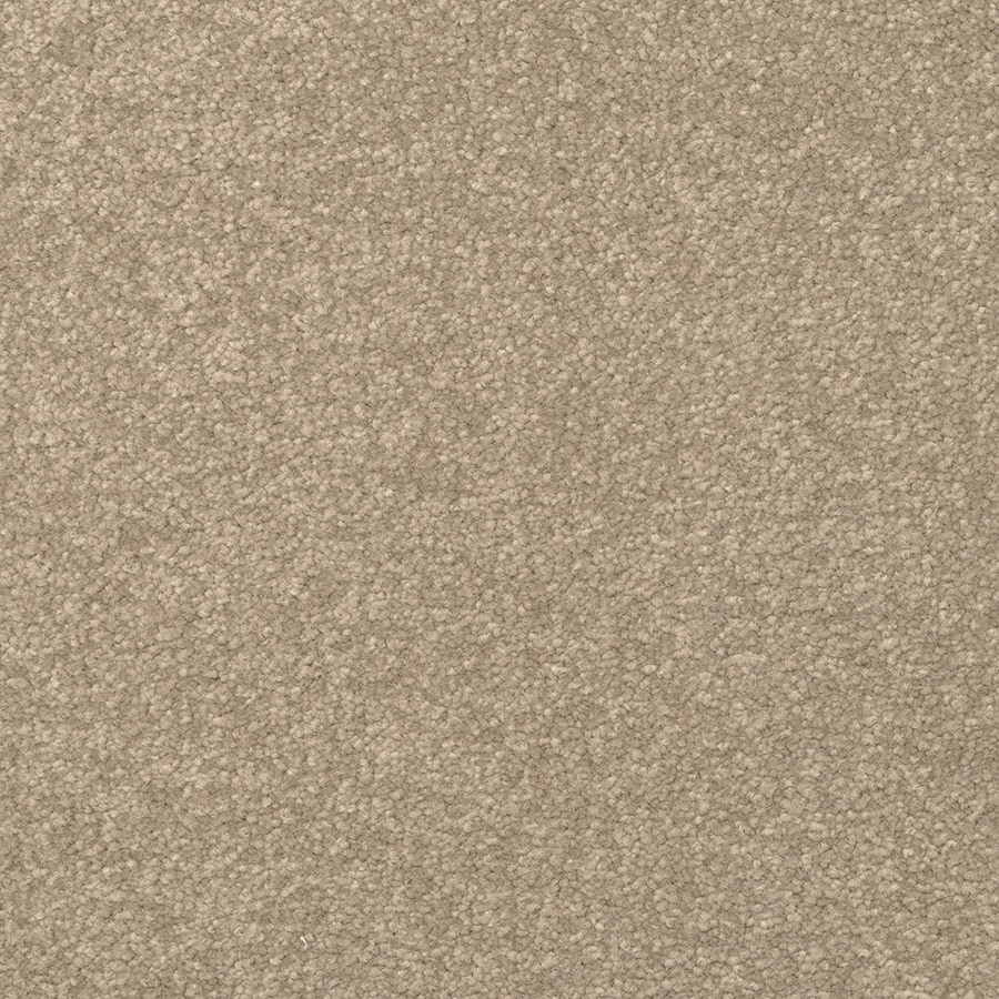 STAINMASTER Active Family Influential Hippo Carpet Sample