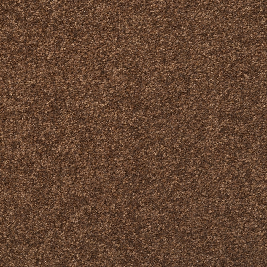 STAINMASTER Active Family Influential Etching Brown Carpet Sample