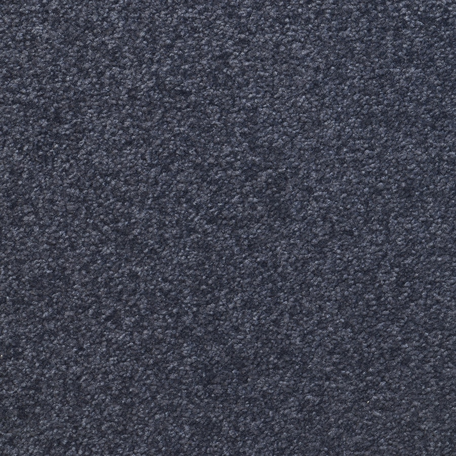 STAINMASTER Influential Active Family Royalty Plush Carpet Sample