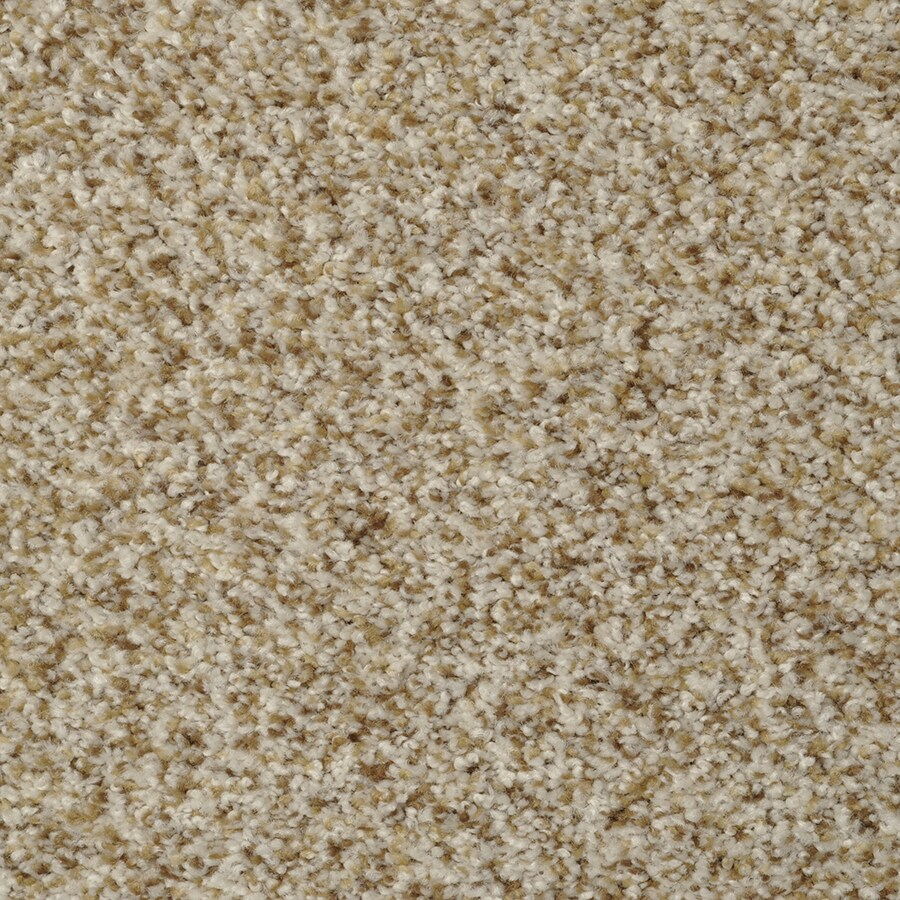 STAINMASTER On Broadway Active Family Oyster Bay Plush Carpet Sample
