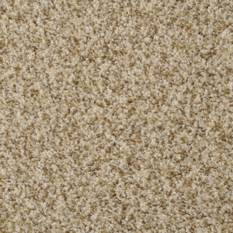 STAINMASTER On Broadway Active Family Alcapulco Sand Plush Carpet Sample