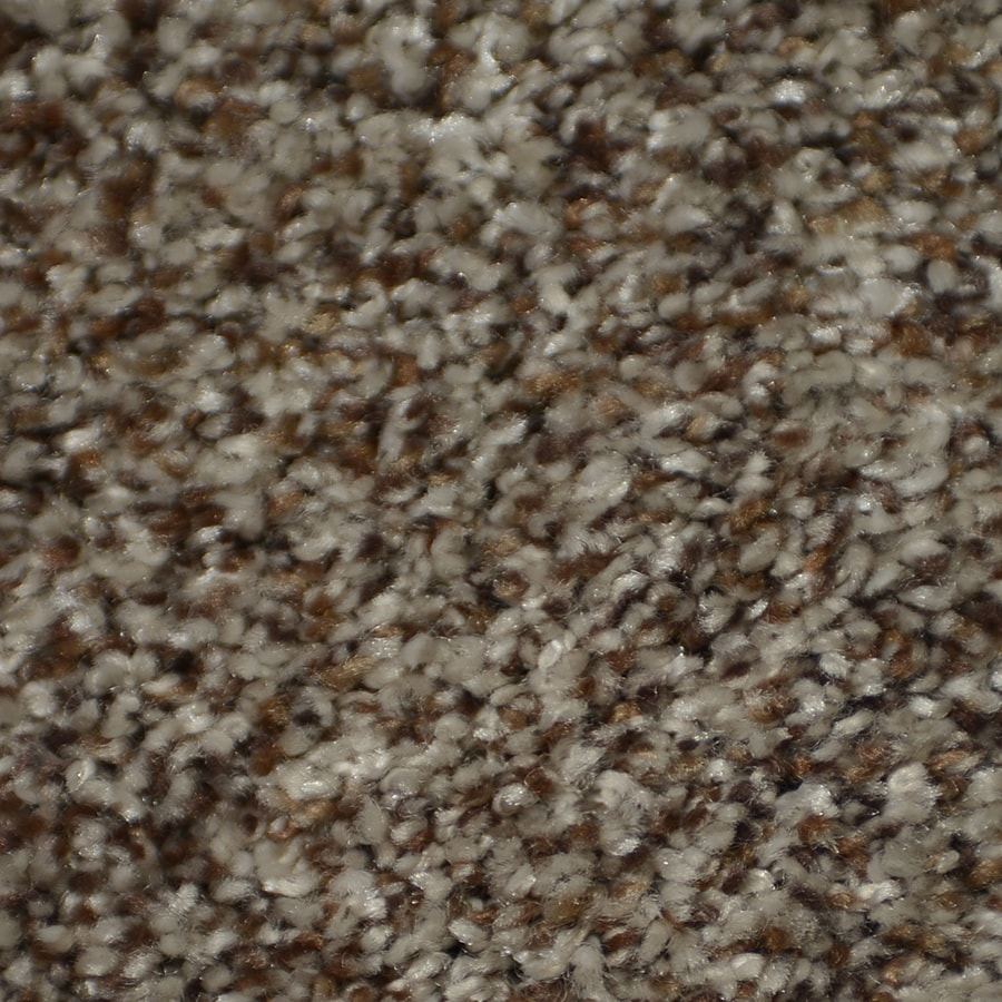 STAINMASTER On Broadway Active Family Seminole Plush Carpet Sample