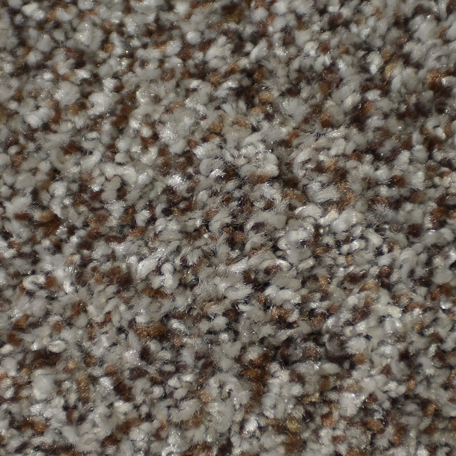 STAINMASTER Active Family On Broadway Boca Carpet Sample