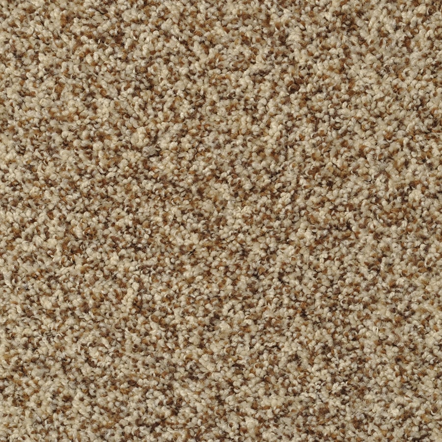 STAINMASTER Active Family Cinema Tuscany Carpet Sample