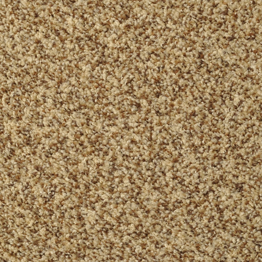 STAINMASTER Cinema Active Family Alcapulco Sand Frieze Carpet Sample