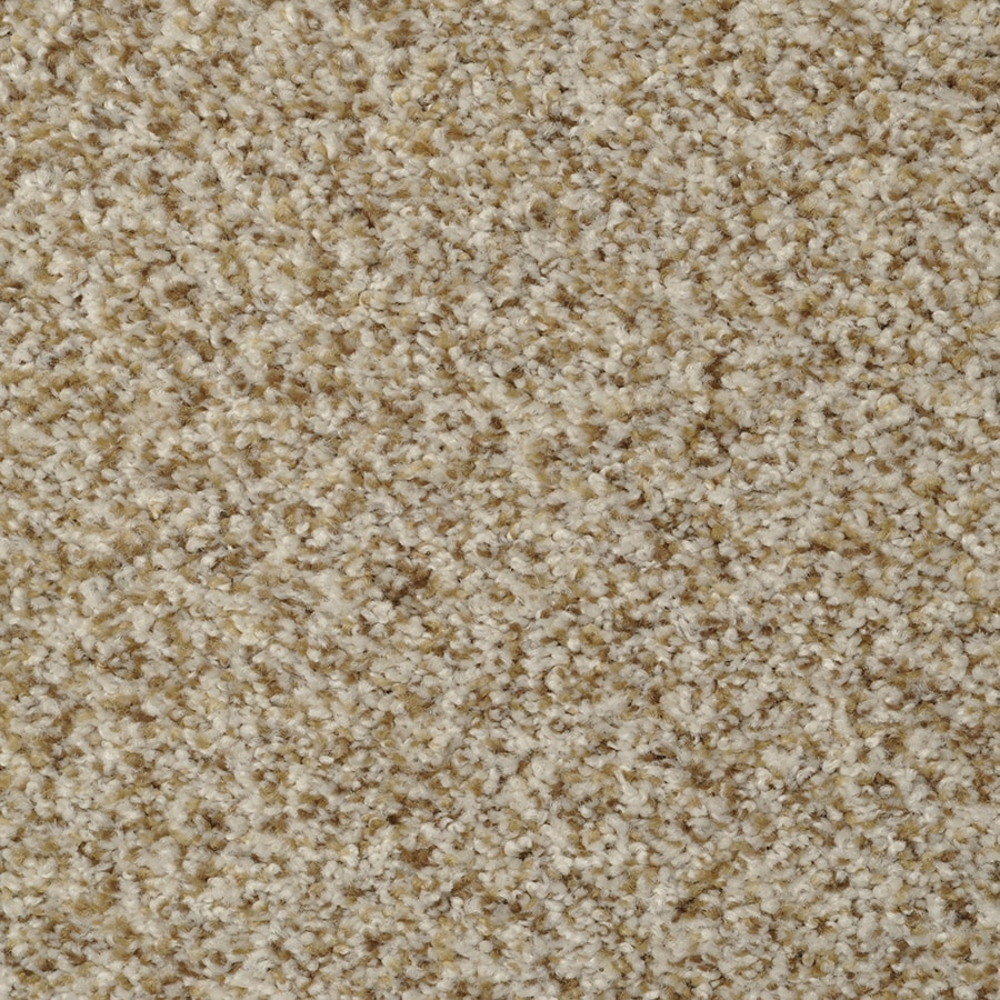 STAINMASTER Active Family Cinema Pebble Beach Carpet Sample