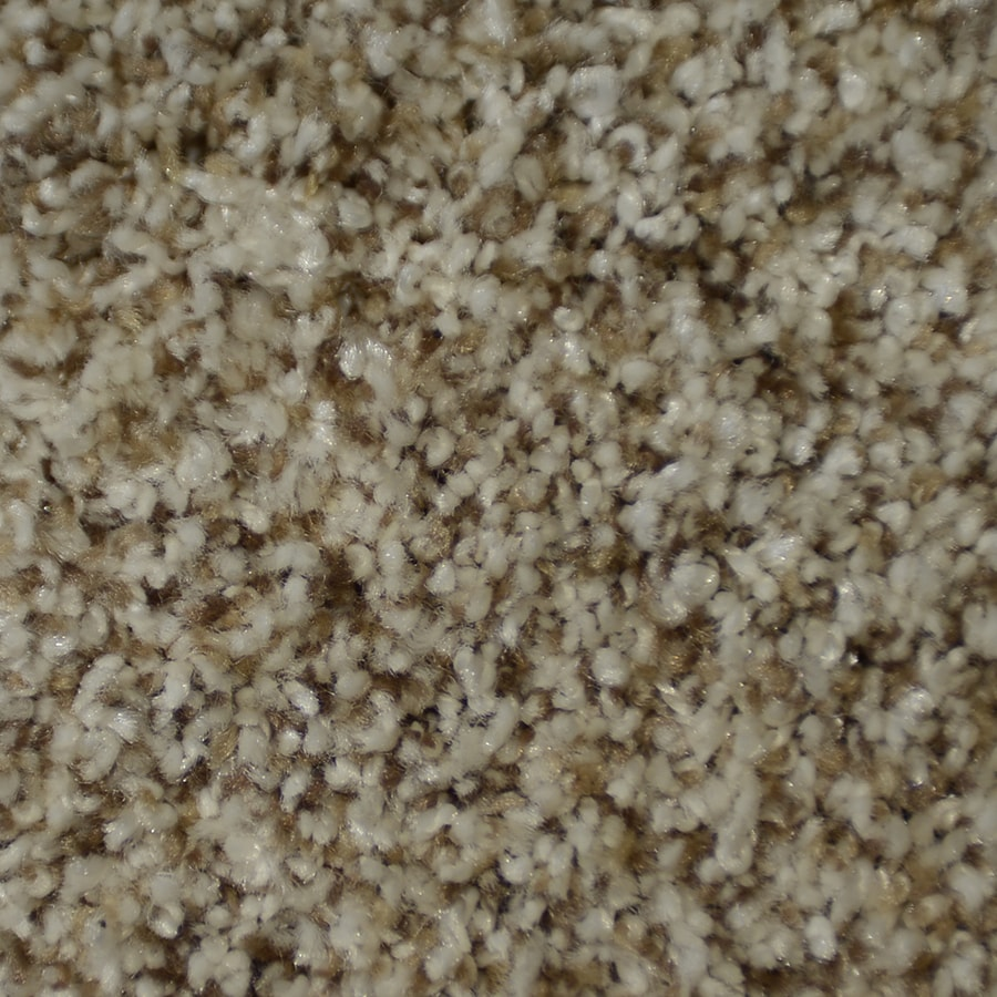 STAINMASTER Cinema Active Family Montage Frieze Carpet Sample