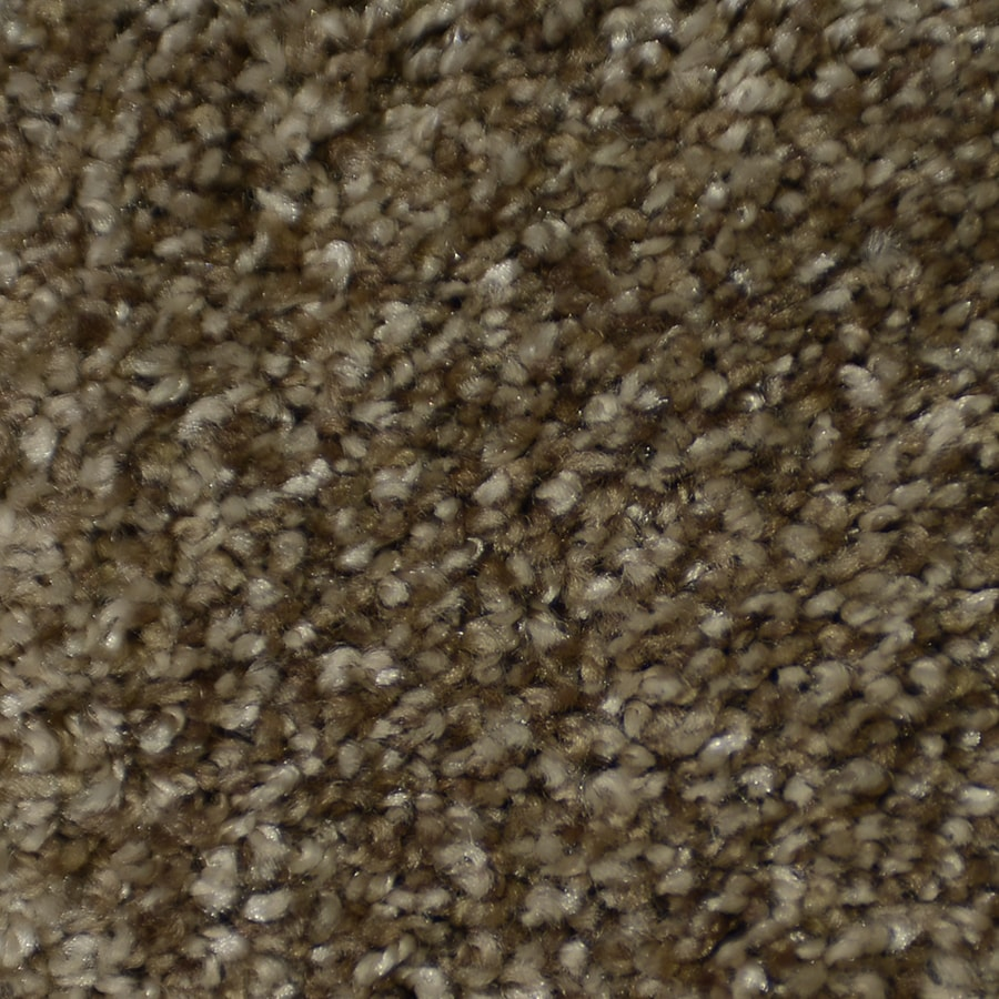 STAINMASTER Active Family Documentary Montage Carpet Sample