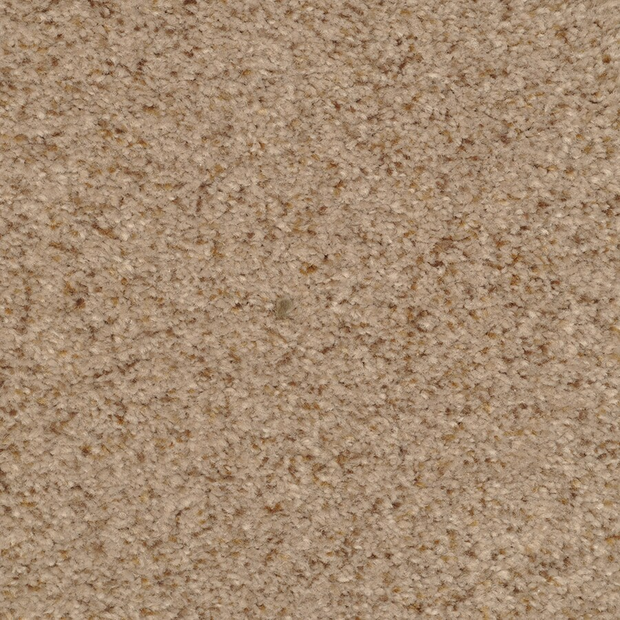 STAINMASTER Active Family Special Occasion Gull Wing Carpet Sample