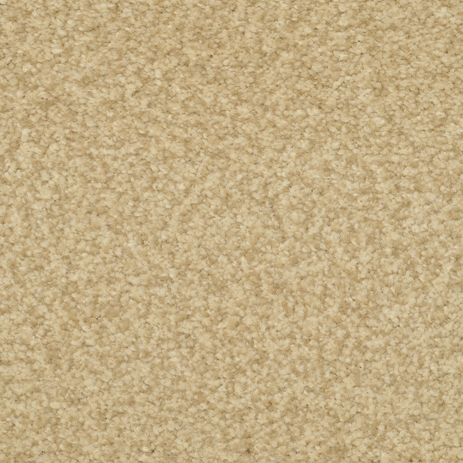 STAINMASTER Active Family Informal Affair Buckwheat Plush Carpet Sample