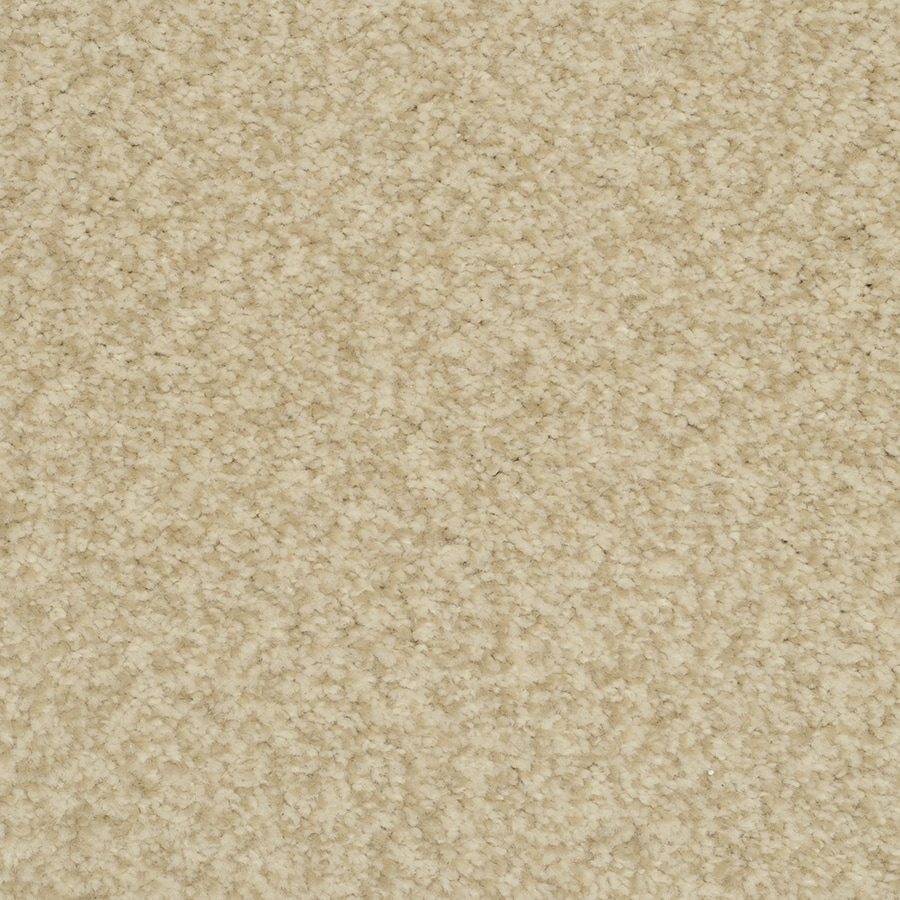 STAINMASTER Informal Affair Active Family Magnificent Plush Carpet Sample
