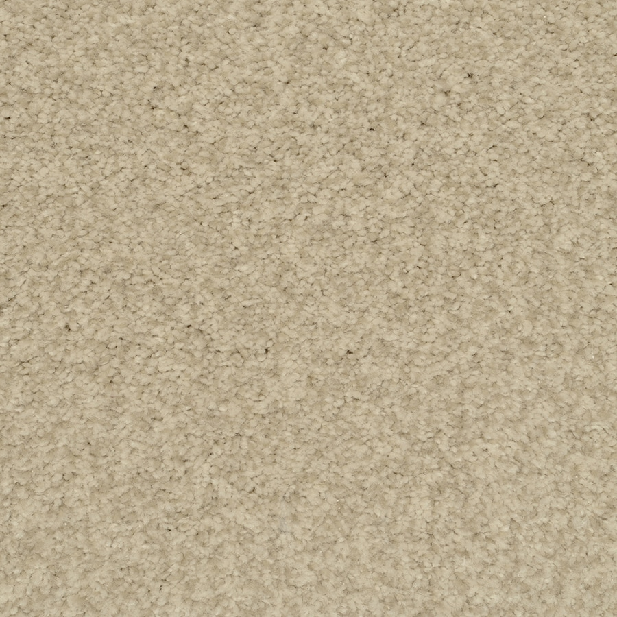 STAINMASTER Informal Affair Active Family China Plus Carpet Sample