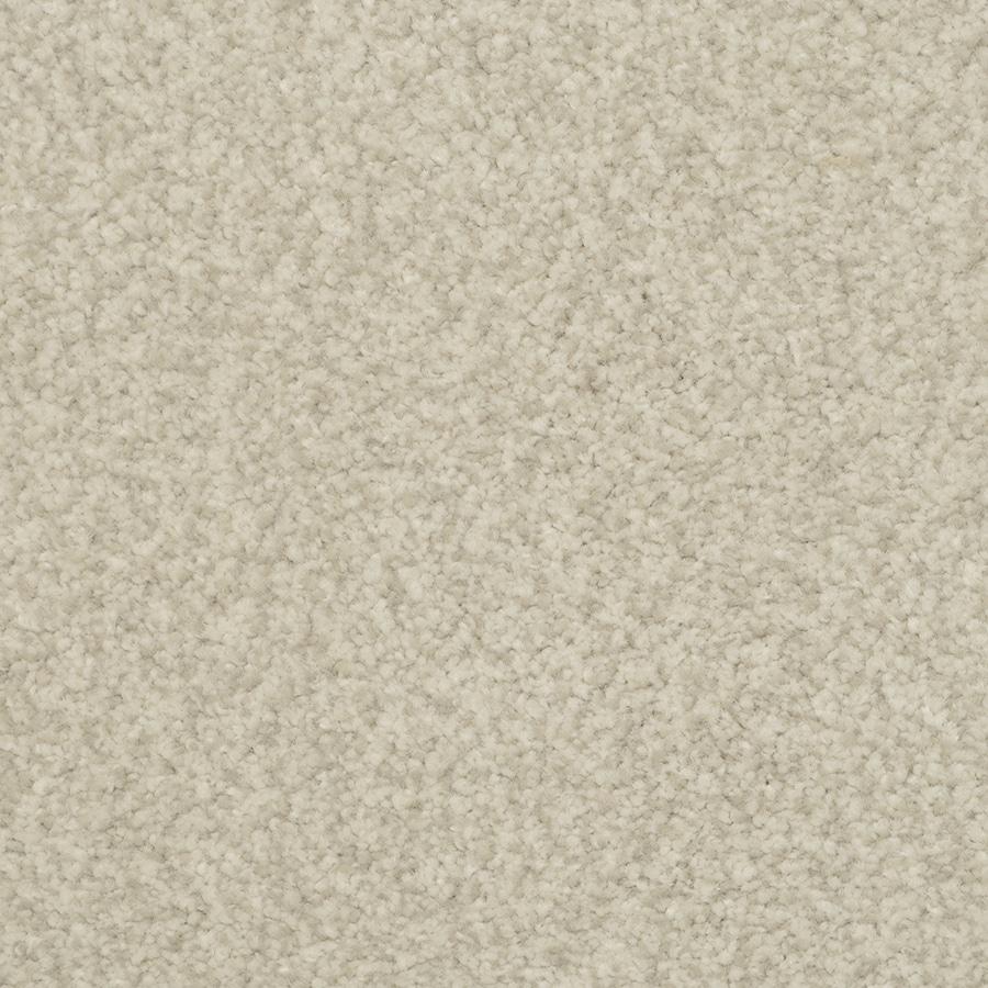 STAINMASTER Active Family Informal Affair Plover Carpet Sample