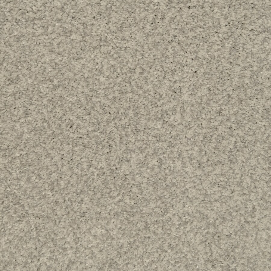 STAINMASTER Active Family Informal Affair Shadow Carpet Sample