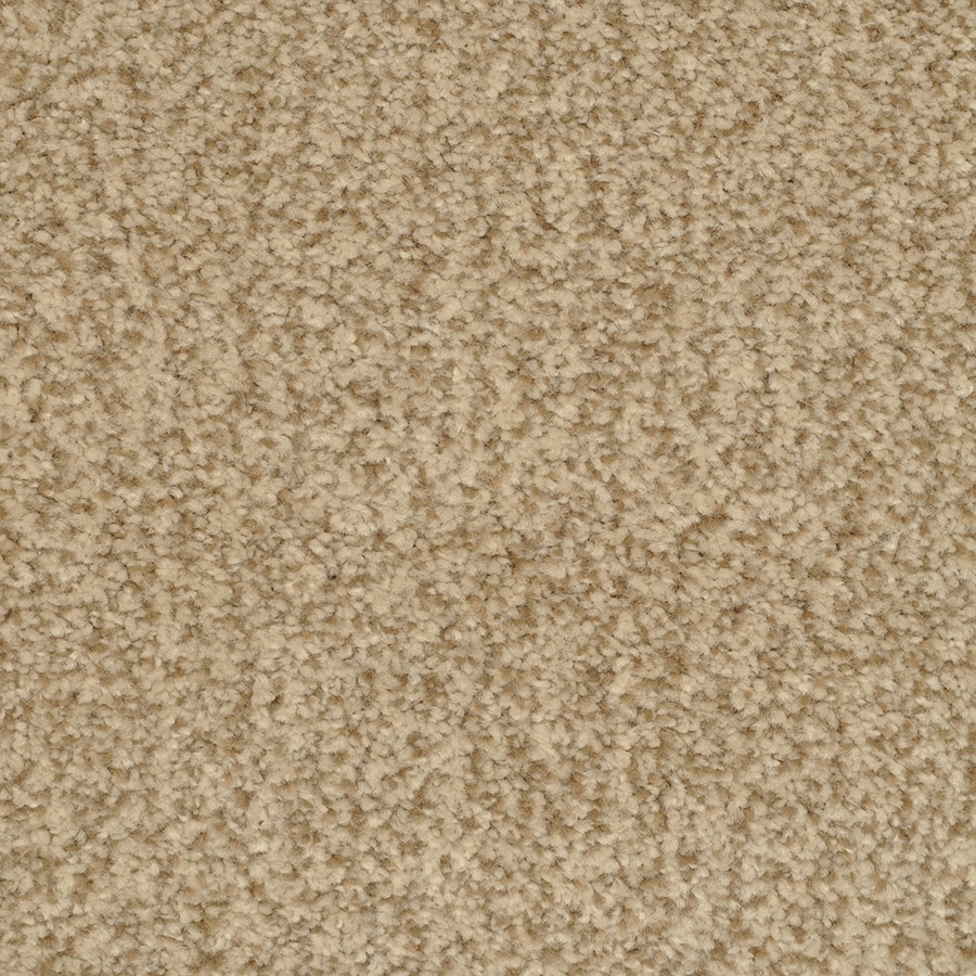 STAINMASTER Active Family Informal Affair Tango Carpet Sample