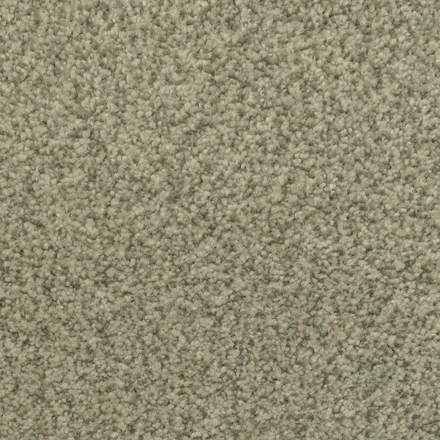 STAINMASTER Active Family Informal Affair Hi Rise Carpet Sample