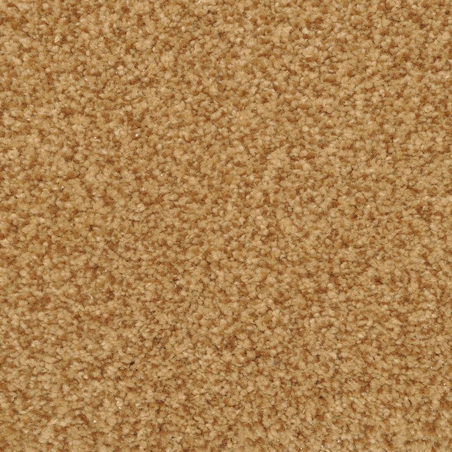 STAINMASTER Active Family Informal Affair Cavern Carpet Sample
