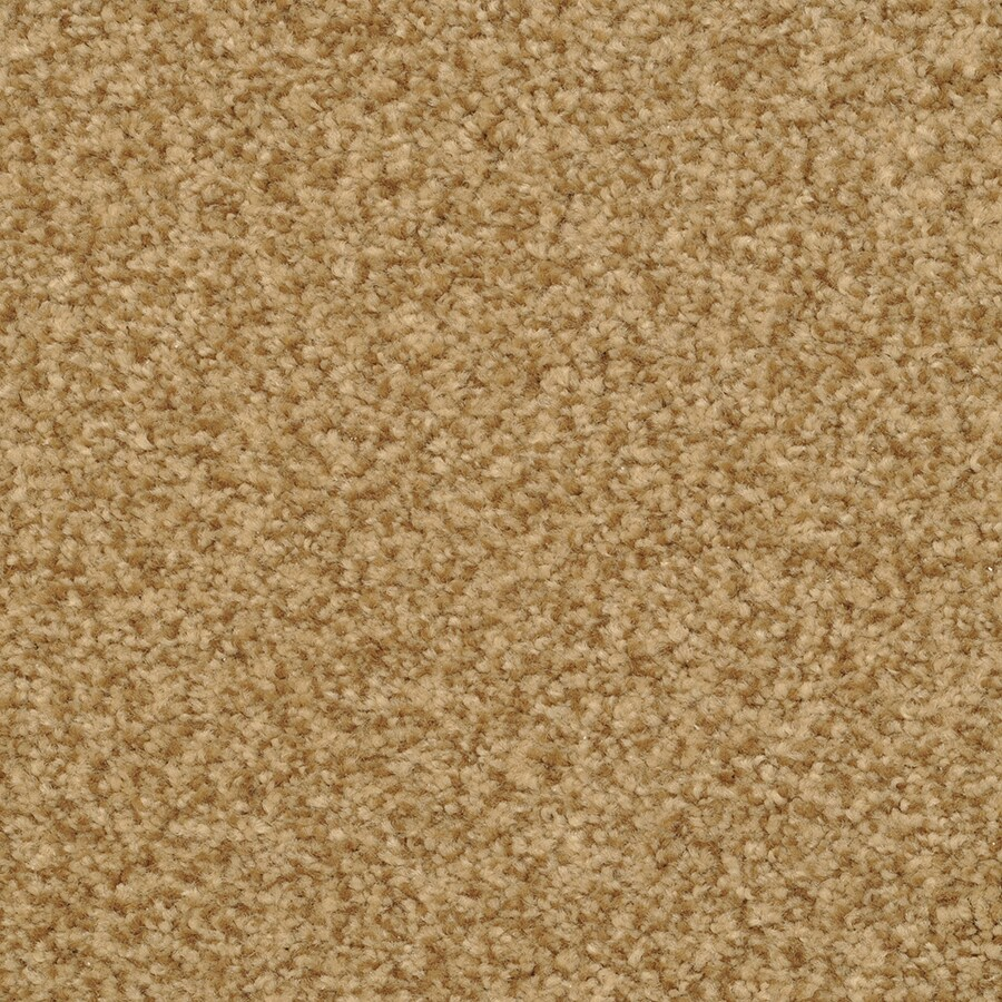 STAINMASTER Active Family Informal Affair Dazzle Carpet Sample