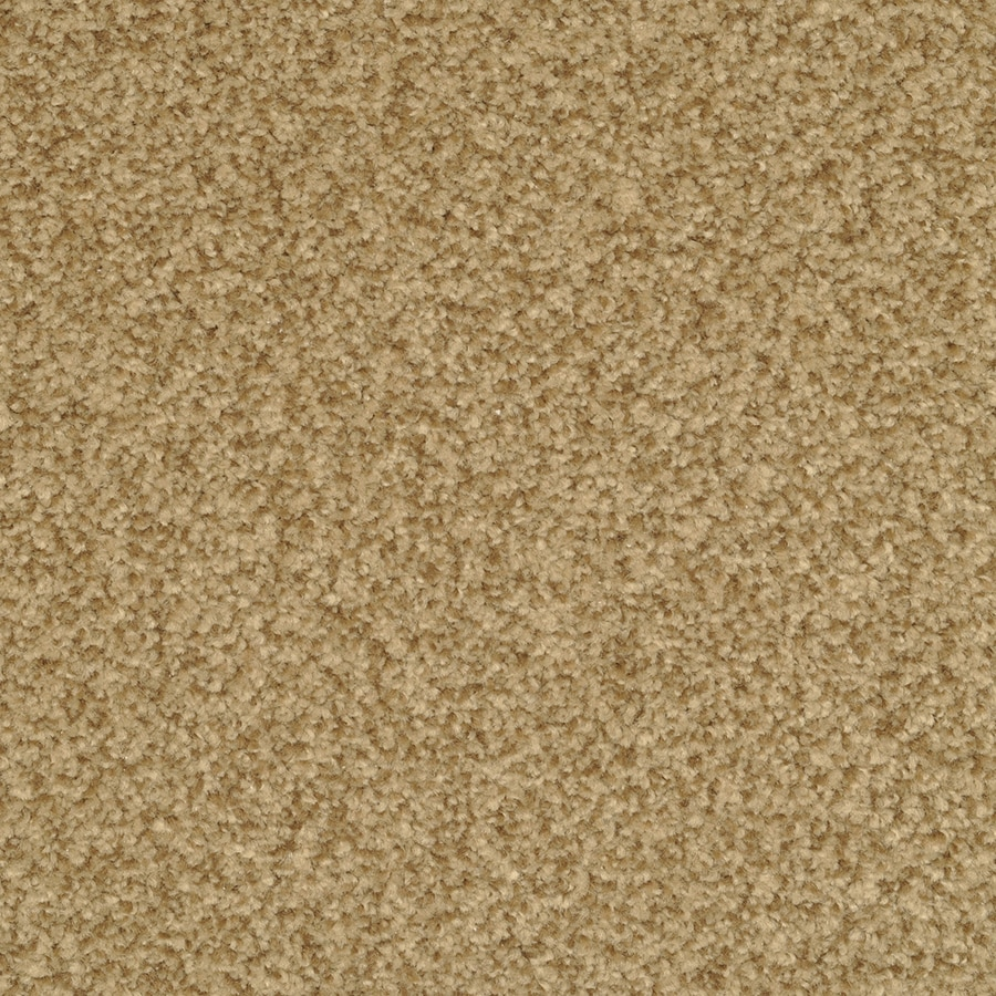 STAINMASTER Active Family Informal Affair Radiant Plush Carpet Sample