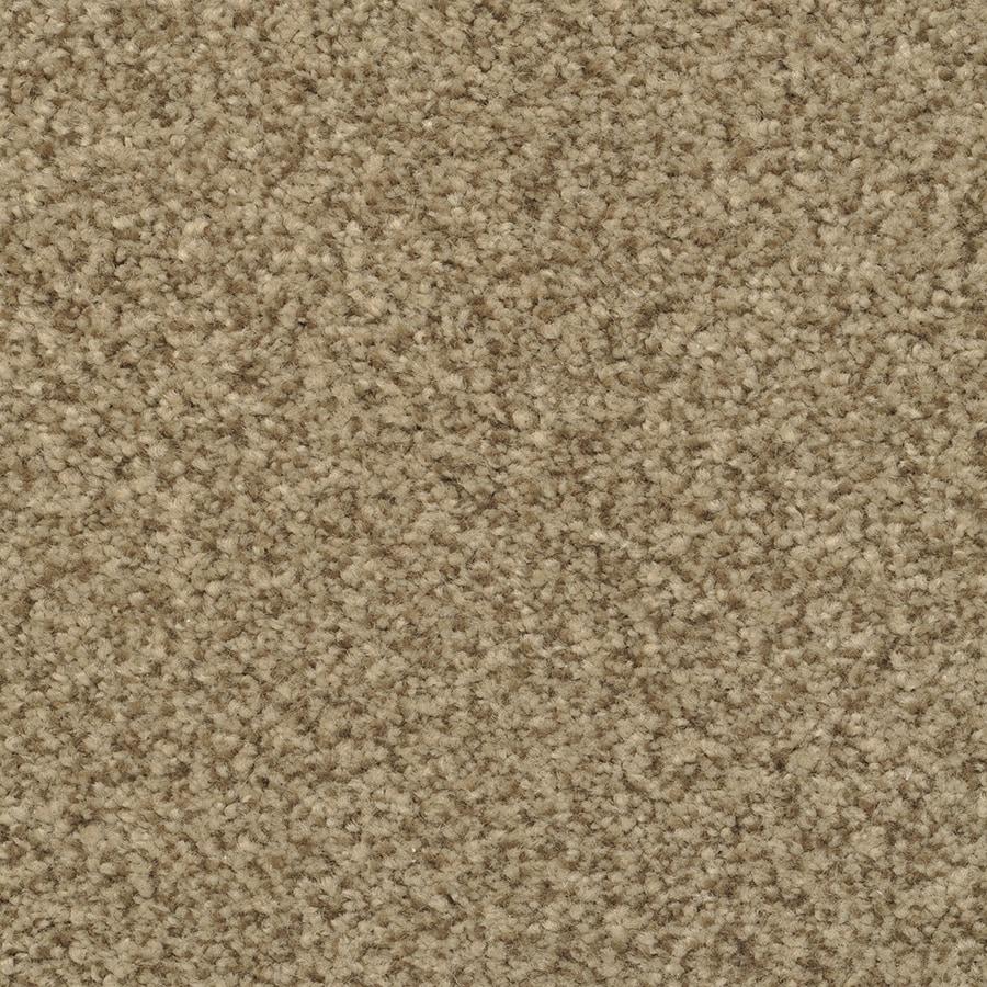 STAINMASTER Informal Affair Active Family Illusion Plush Carpet Sample