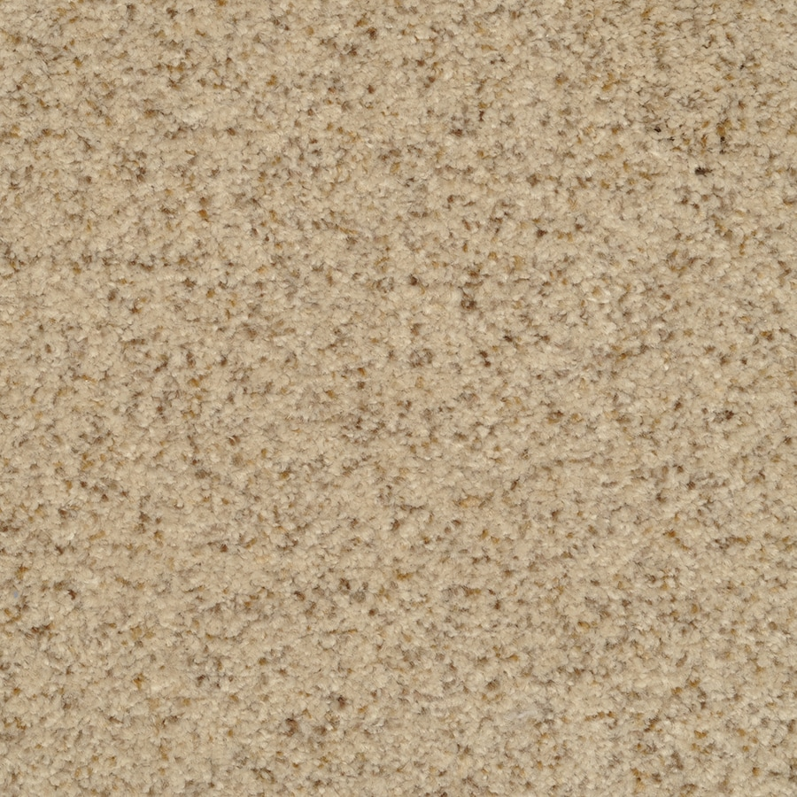 STAINMASTER Active Family Informal Affair Corniche Carpet Sample